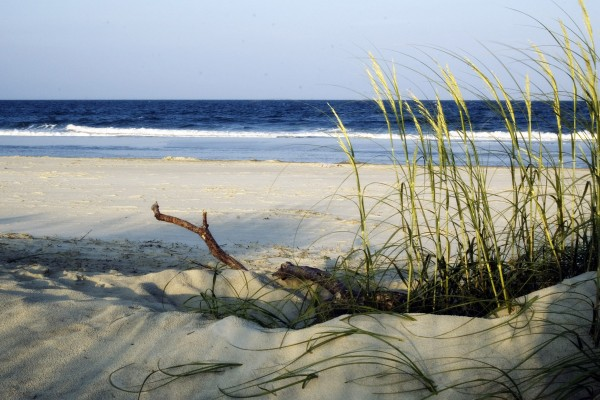 things to do in tybee island